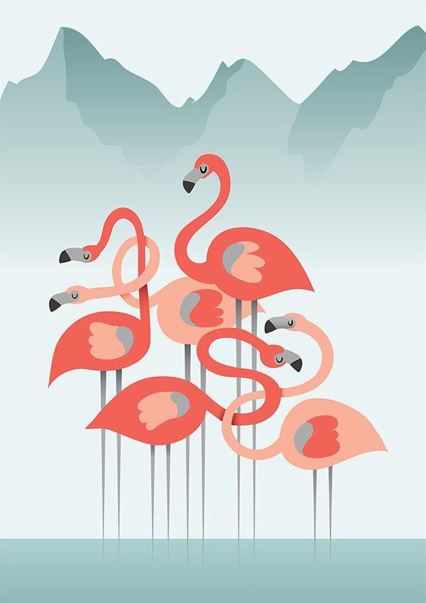 Flamingo Illustration Behance Project