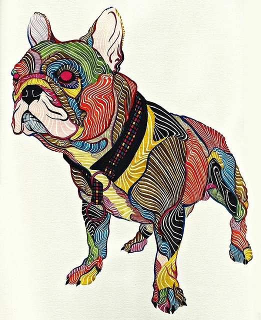 Bulldog by Kael Kasabian., via Flickr