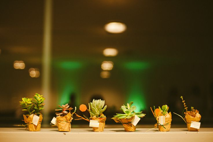 Succulents as wedding gifts at Vanessa & Luís wedding in Tentúgal at Quinta do Mourão, Portugal. More here: http://www.fotografamos.com/2014/03/19/vanessa-luis-wedding-in-tentugal/