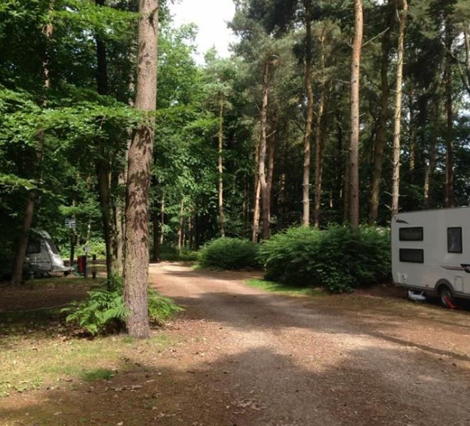 Woodland Caravan Park, Snelston, Asbourne, Derbyshire, The Peak District. England. UK. Caravanning. Caravan Holiday. Adults Only. Staycation. Dog Friendly. Woodland. Nature. Walking. Cycling.