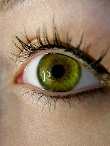 25 Best Ideas About Green Eyes On Pinterest Makeup For