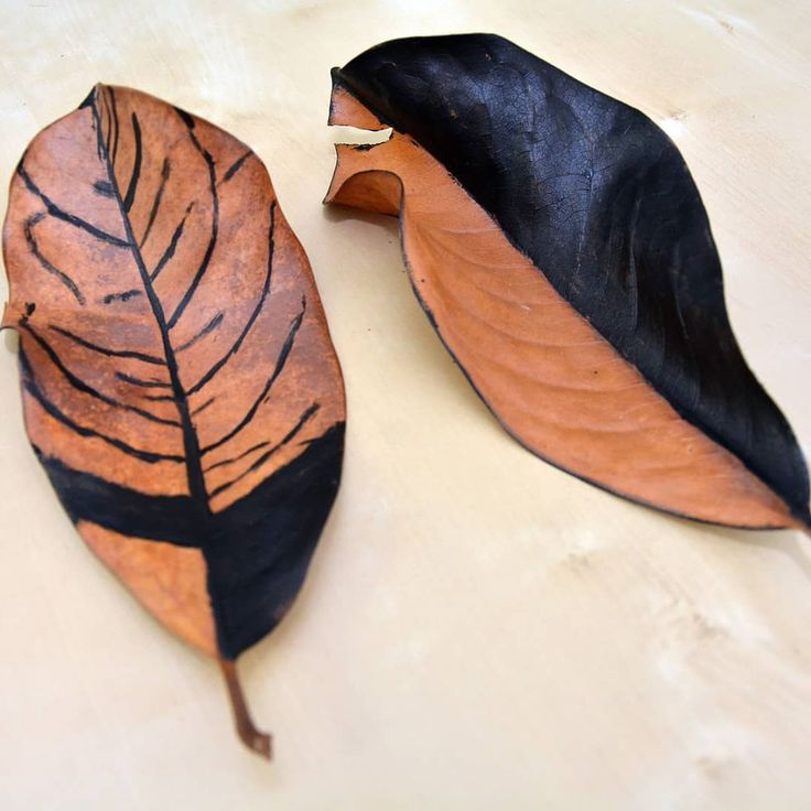 Painting leaves! #october #autumn #dryleaves  #diy #wood #black #decor #paintingblack #craft #photooftheday  #instafall #instagood  #instaautumn #falltime #naturelovers