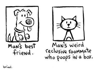 Pets.Cat, Best Friends, Laugh, Dogs, So True, Funny Stuff, Humor, Things, Animal