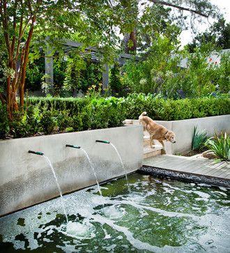 Bill Bocken Architect ,Dupont Street Residence , San Diego, CA    Mediterranean   Landscape   San Diego   Shelley Metcalf Photographer