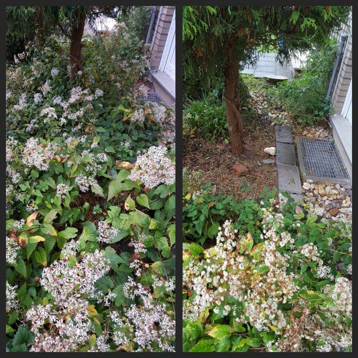Great Da war nochmal eine Abflussschacht im Garten schacht reinigen r ckschnitt unkraut