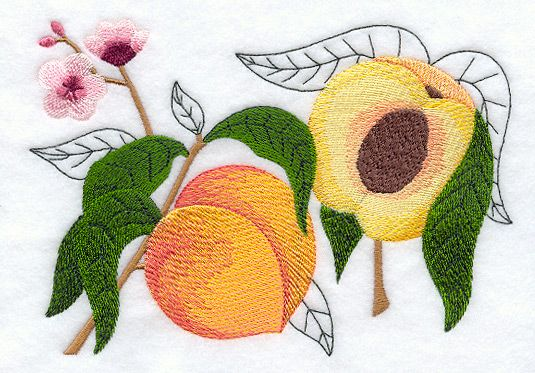 Rp Machine Embroidery Peach Botanical Embroidery