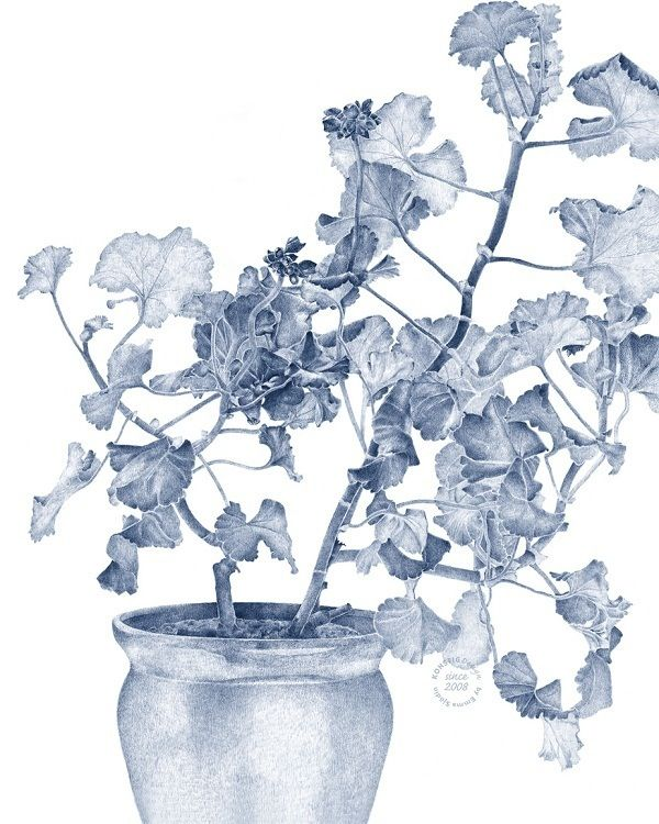 """A first in the US! The talented Swedish designer Emma Sjodin has received great reviews in Scandinavia for her product line """"Swedish Geranium&..."""