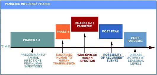 PANDEMIC INFLUENZA PHASES - Moinuddin Biyabani - Google+
