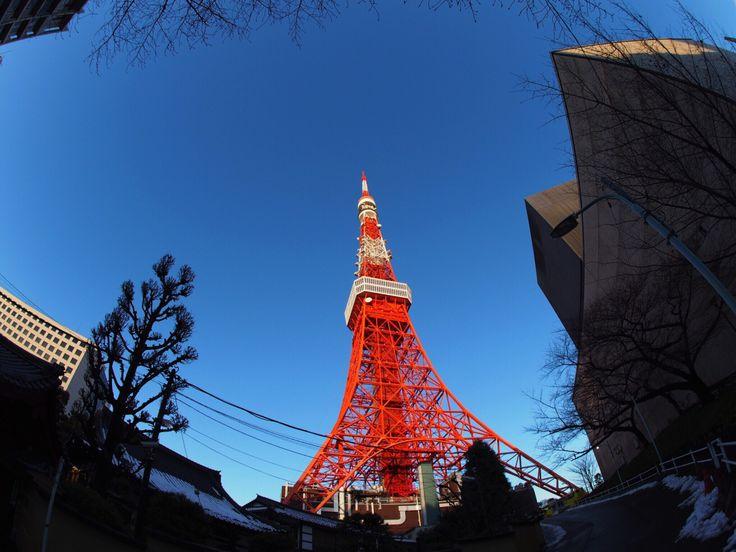 2016.01.18 #東京タワー #魚眼レンズ