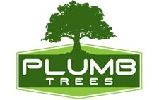Plumbtrees.com.au is a well know for a tree care specialist in #Sydney. They provide the services such as, #treeremoval, #treetrimming and pruning, tree root removal, #palmtree #clean up #services and many more at reliable prices only.