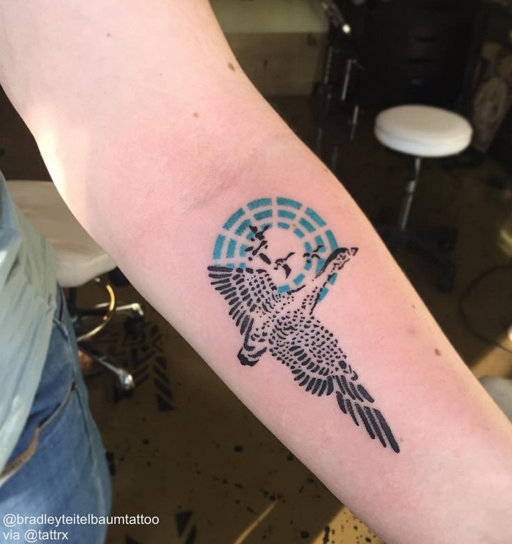 Bradley Teitelbaum   NYC Goose tattoo for Emmawrtnyc@gmail.com
