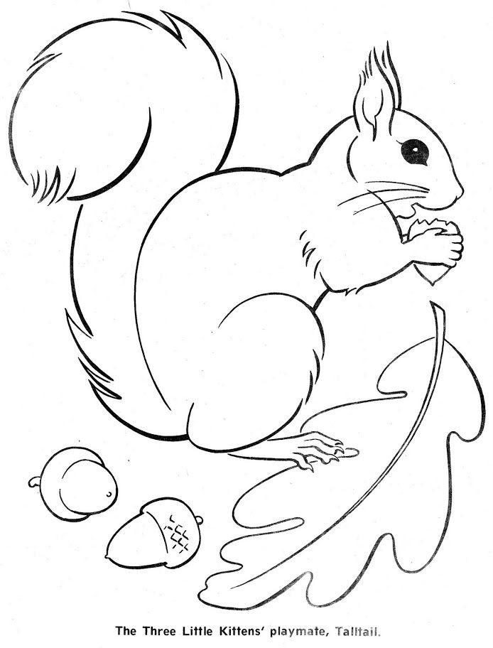The three little kittens children 39 s coloring books for Coloring page of a squirrel