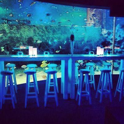 Dinner @Turkuazoo Akvaryum aquarium