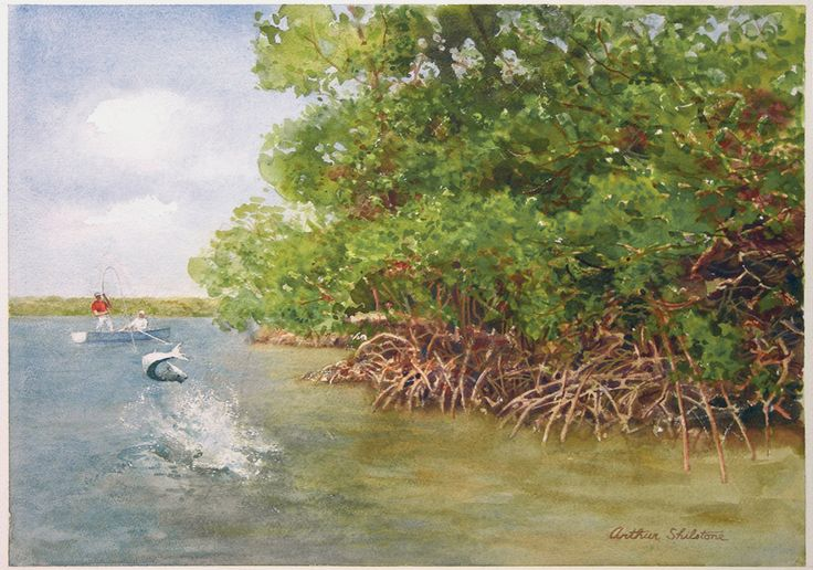 """Strike Near the Mangroves"" by Arthur Shilstone. Watercolor on paper, 18"" x 23"".Fish Art, Fly Fish, Trout Ladders, Arthur Shilston"