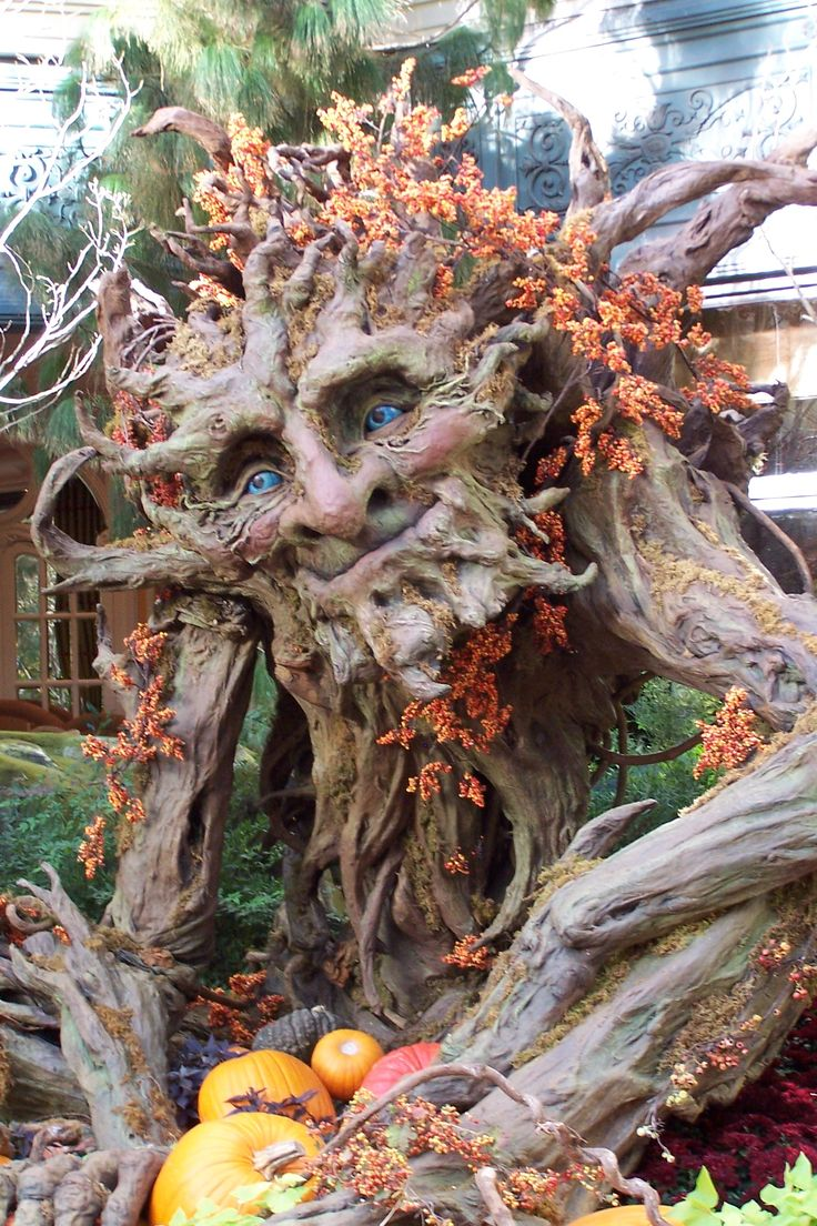 Old Tree Man Bellagio Atrium Las Vegas Weird Trees
