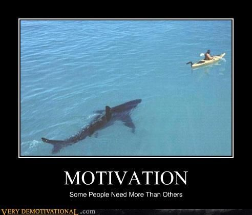 "4'《《 ¡ chuckled a little more than i should have the first time i saw this! 《《 ""funny motivational posters = ``·. ! ^¤_~ ··. ""\ ... , shark, demotivational, posters, humor, jokes, comedy, funny, ""\o/'~"