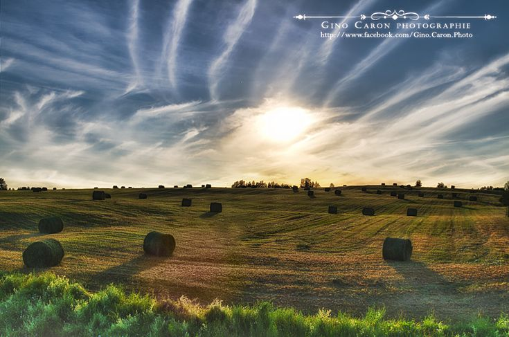 Gino Caron Photographe - Balles de foin au coucher du soleil