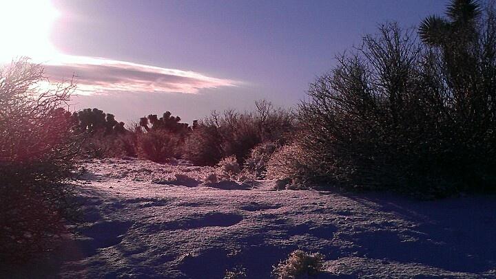 The desert in the snow. Phelan, Ca. 1/8/2013