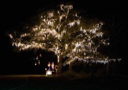 Holiday Festival of Lights, James Island, SC