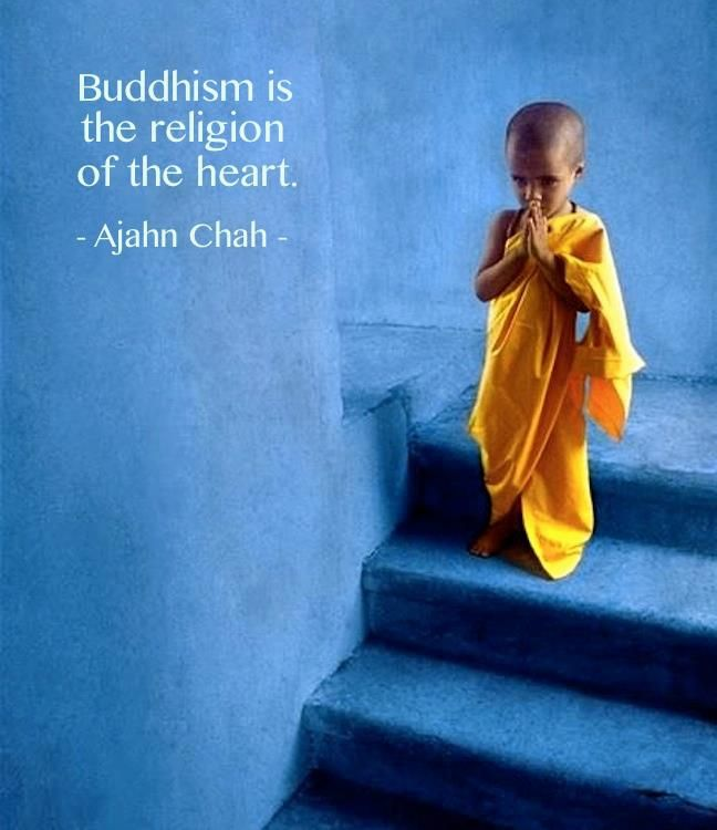 buddhist meditation The lion's roar guide to buddhism for beginners has helpful answers to all of your questions about buddhism, buddhist teachings, and meditation.