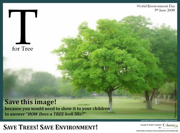 Image detail for -World Environmental Day - CAclubindia