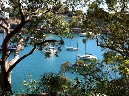 Berry Island, Wollstonecraft is a lovely place for picnics and family gathering.  It has stunning harbour views, open lawns for ball games, nice playground and the Gadyan Track Walk which still has some evidence of Aboriginal history.
