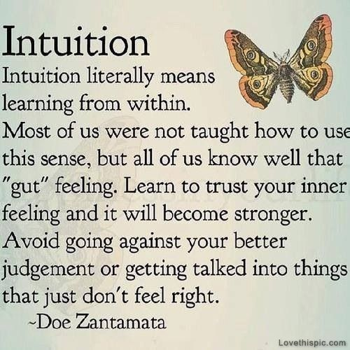 intuition = learning from within
