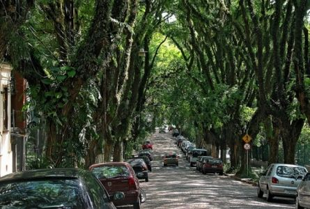 """Ако напишете в някоя интернет търсачка """"най-хубавата улица в света"""" сред първите резултати, които ще излязат, със сигурност ще фигурира """"Rua Gonçalo de Carvalho"""", която се намира в Порто Алегре - столицата и най-голям град на бразилския щат Рио Гранде до Сул."""