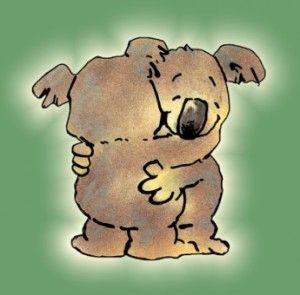 Koala Hugging Cartoon • Australian mateship