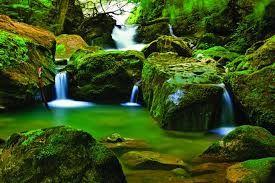 Resultado de imagem para papel de parede paisagem cachoeira