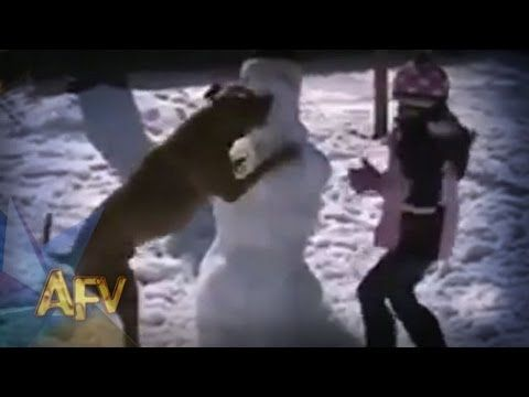 Dog Levels Snowman   Funny Dogs   AFV -  #dog #dogs #funnydogs #puppy #doglover #animals #animal #pet #cute #pets #animales #tagsforlikes In this funny dog video, a pooch takes down a snowman and feasts off his snow!  It's an AFV original. SUBSCRIBE for more funny videos:  Want a chance to be on AFV? UPLOAD YOUR VIDEO NOW:... - #Dogs