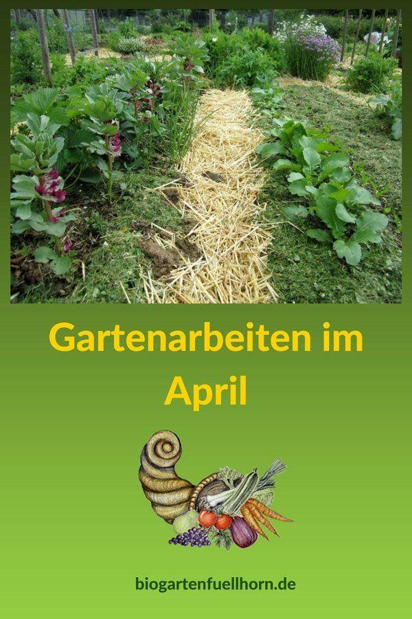 Gartenarbeiten im April - Was ist im April im Garten zu tun? #garten #aussaaten #selbstversorger