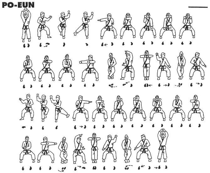chito ryu white belt book pdf