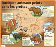 Quelques animaux peints dans les grottes - Le Petit Quotidien, le seul site d'information quotidienne pour les 6 - 10 ans !