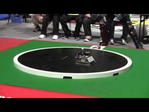 Màn trình diễn robot đấu sumo nhanh như chớp ở Nhật