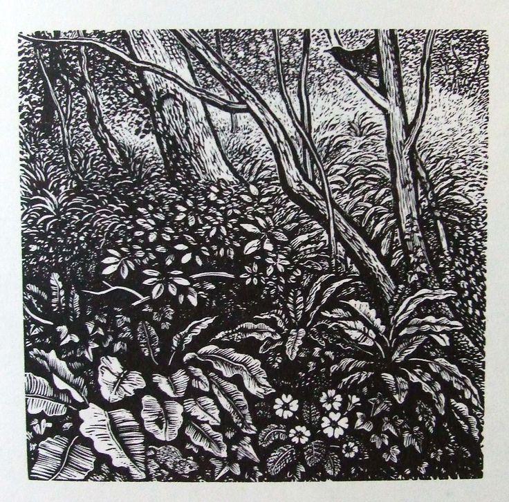 REYNOLDS STONE wood engraving. Garden at Litton Cheney. 1960