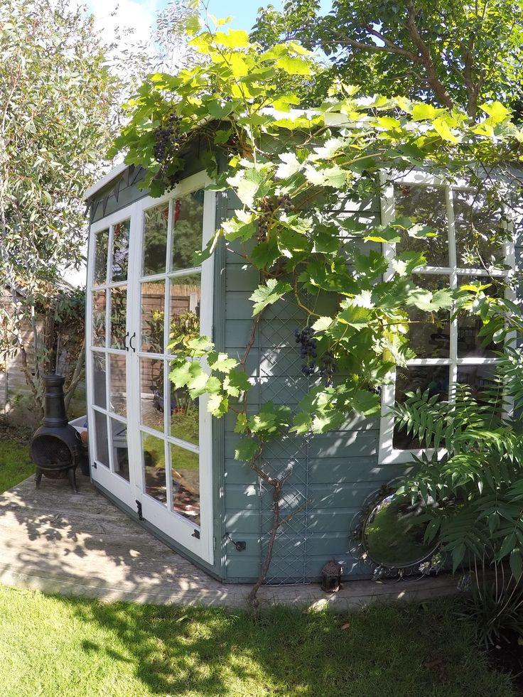 Summerhouse, Garden, Gardening, Grape Vine, Victorian House, Renovation.