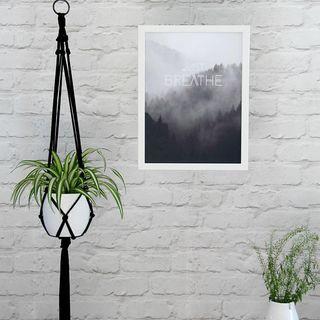 Quelle plante avoir dans la chambre acheter plante chambre d coration plantes int rieur - Plante dans la chambre ...