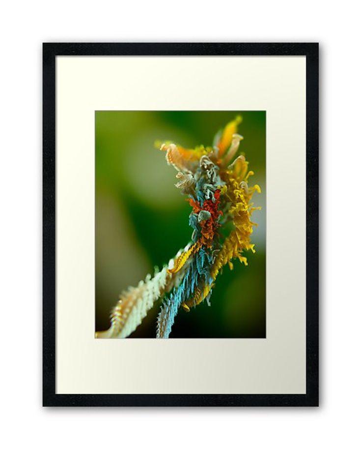 Framed Art Print from Microplants Series #art #print #poster #fractal
