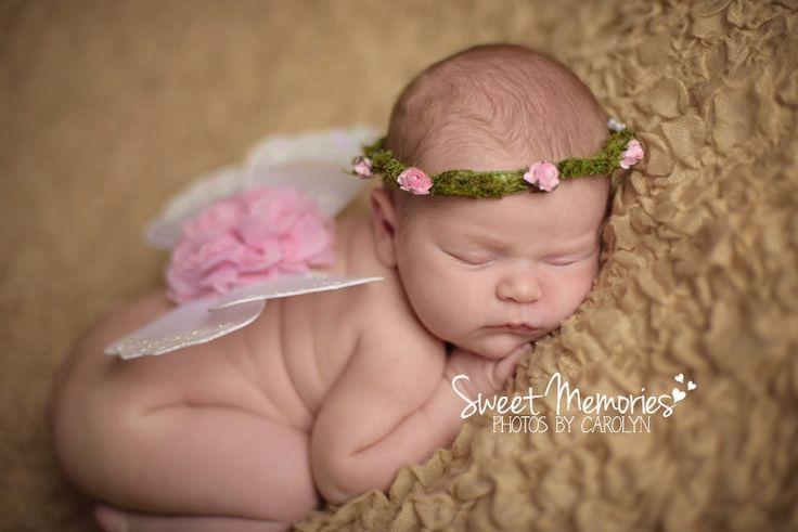 Newborn photographer doylestown bucks county pa sweet memories photos by carolyn newborn baby butterfly