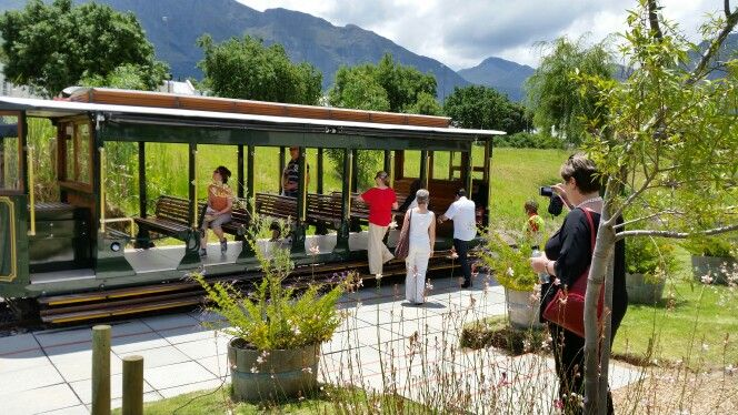 Wine tour by tram