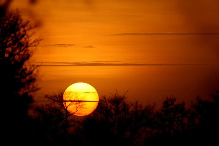 Sunset, Parc National de la Pendjari, Benin