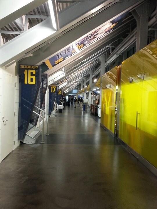 New Michigan Hockey concessions
