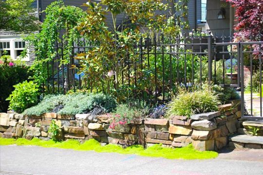 10 best images about front courtyard on pinterest patio for Courtyard stone and landscape