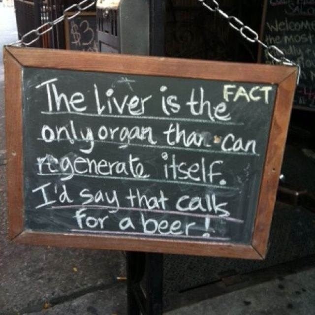 The Liver Is The Only Organ That Can Regenerate Itself. I'd Say That Calls For A BEER.