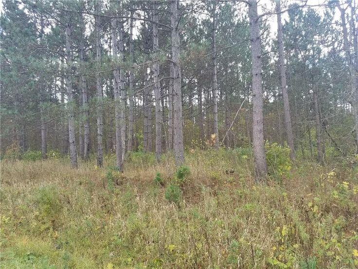 This 40 acre parcel is prime hunting land. Great location near Bear Lake. Located in Rice Lake. MLS# 1516180 $120,000 #RiceLake #realestate