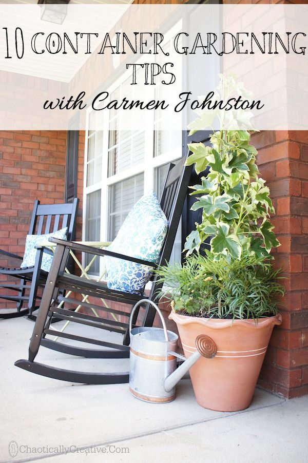 10 TOP TIPS from a  SOUTHERN LIVING  HOME EXPERT   Shady Container Garden and What to Plant