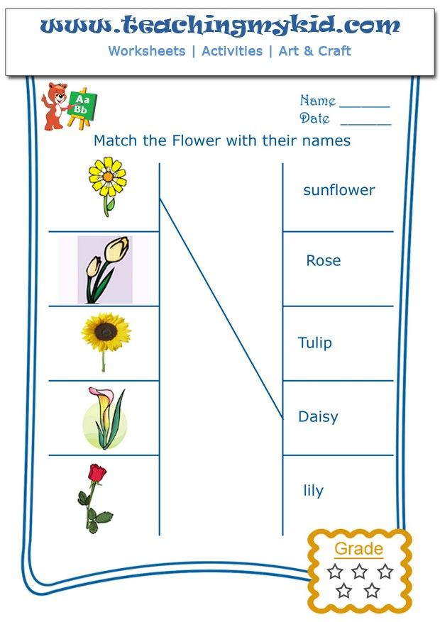 printable kindergarten worksheets match flowers with name 1 pinterest. Black Bedroom Furniture Sets. Home Design Ideas