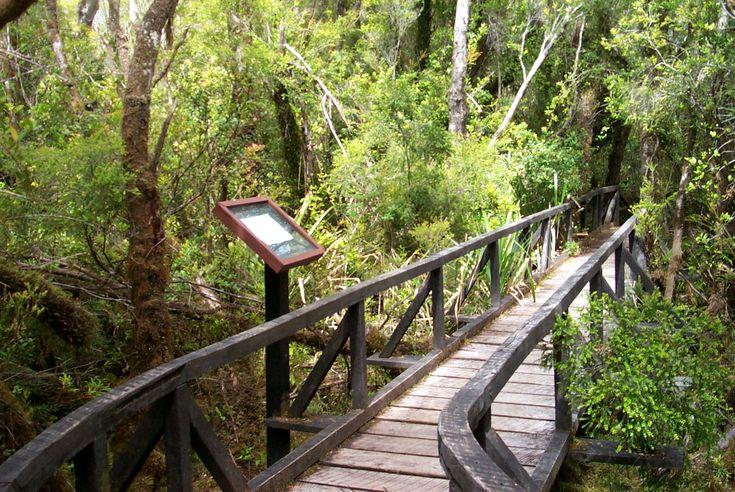 Chiloé.... <3 <3 algún lugar más lindo y mágico que este??
