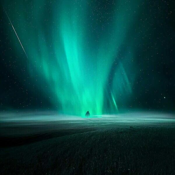 """Previous pinner: Aurora borealis. Me: This appears to be an aurora """"touching down"""" on the earth. Does this ever really happen? Just asking. Never seen any other image like this."""